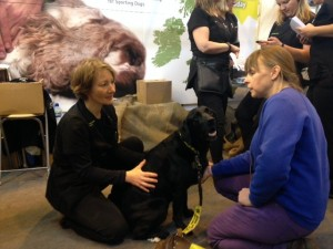Three Counties Canine Massage Therapy at Crufts 2015